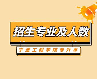 2021年宁波工程学院专升本招生专业及人数